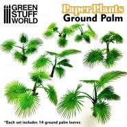 Paper Plants - Ground Palm